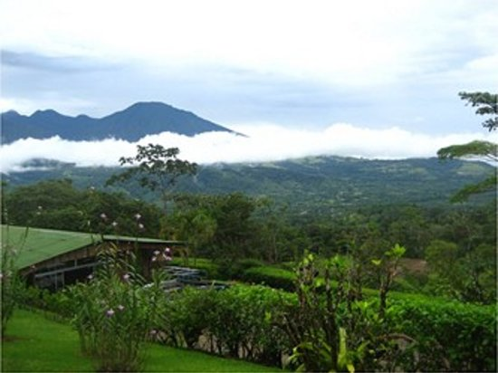 Heliconias Lodge: Vista - View