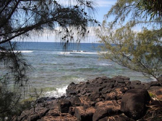 Koloa Landing Resort at Poipu, Autograph Collection: Nearby hike along coastline