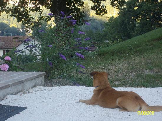 Cerqua Rosara Residence: Camillo