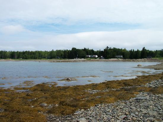 Windward Cottages: Low tide