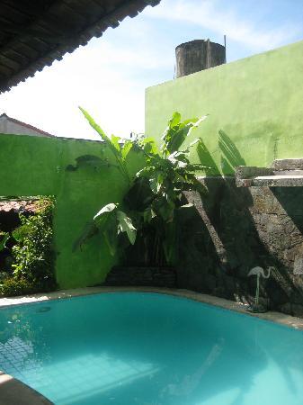 Hotel La Posada del Rey Primero: swimming pool with song birds