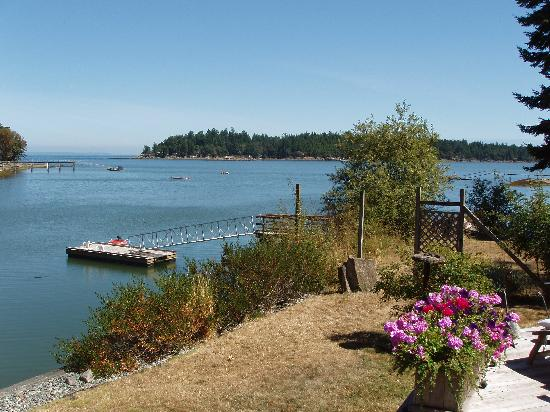 Salish Sea Bed & Breakfast: Across the lawn to the sea.