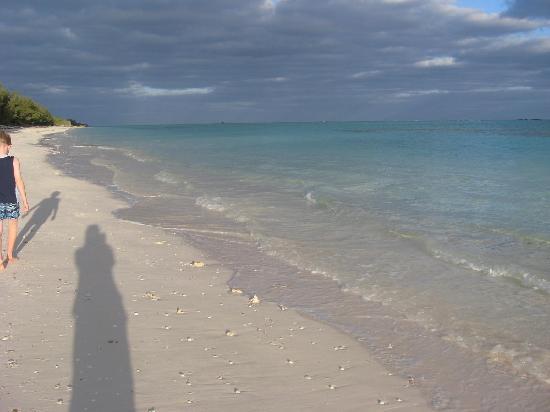 Pelican Beach Hotel: The beautiful, quiet beach.