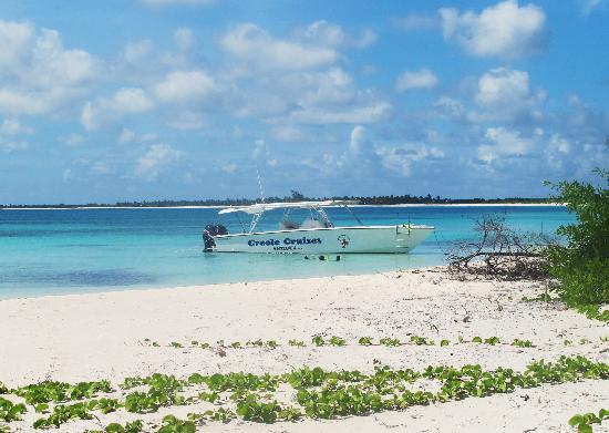 Bird Island Tours Antigua