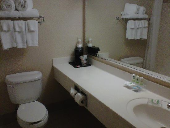 Country Inn & Suites By Carlson, Marquette: bathroom