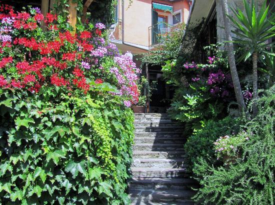 Hotel Danila : fiori dappertutto, che belli