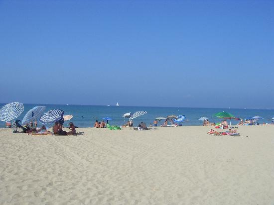 HSM Venus Playa: beautiful beach