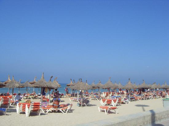 HSM Venus Playa: lots of sun loungers