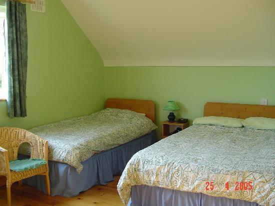 Drumgowan House B&B: Spacious rooms.