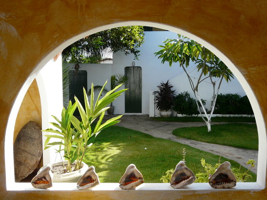 Pousada Chez Roni: Jardin