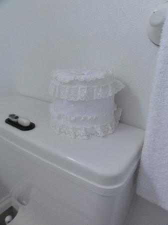Mon Logis Bed and Breakfast: frilly.....