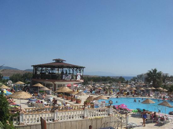 Palm Garden Hotel: бассейн