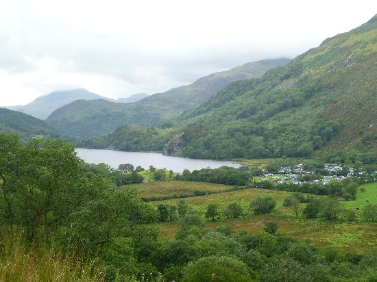 Llyn Gwynant Campsite: View of campsite from road