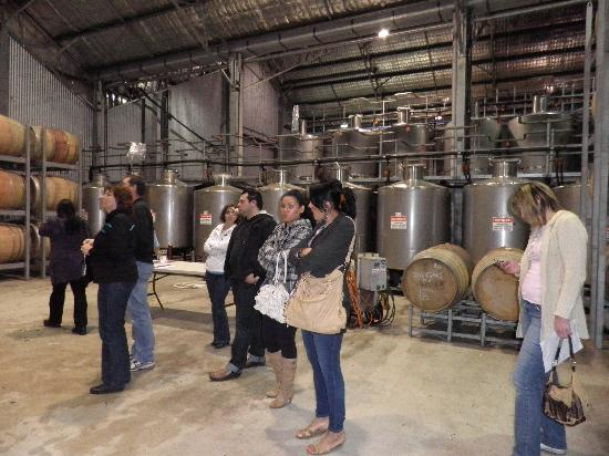 Hunter Valley Wine Tasting Tours: Group at First Creek Wines