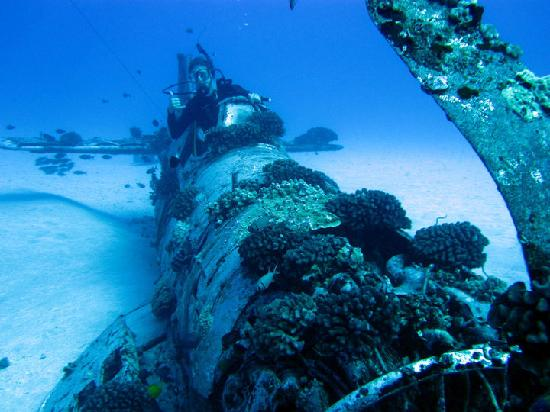 Reef Pirates Diving: Corsair (106 ft. down)