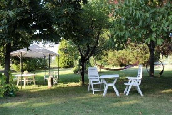 Bed and Breakfast Casale Isorella : Il giardino