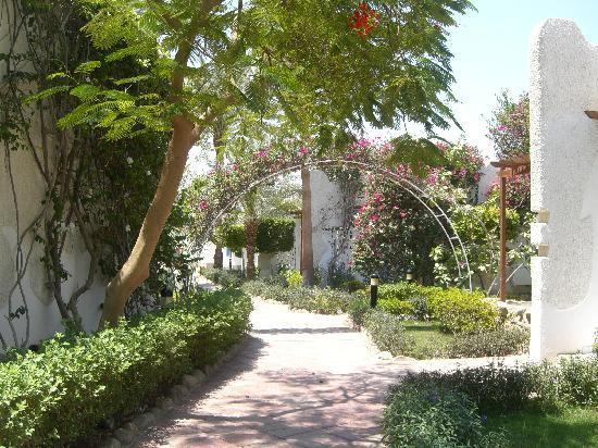 Fayrouz Resort Sharm El Sheikh: Lovely Grounds