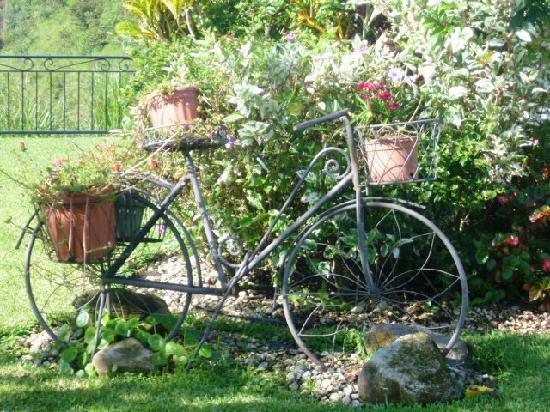 Hacienda Los Molinos Boutique Hotel : la biciplantas