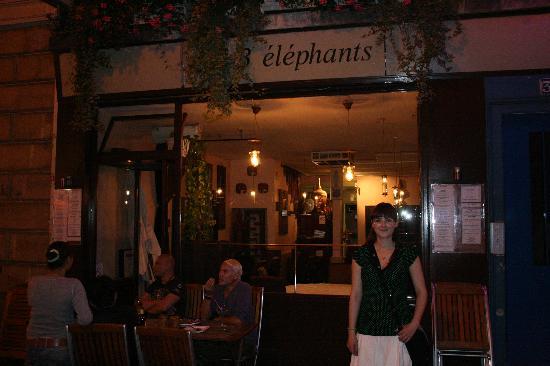 Aux 3 elephants: Outside view