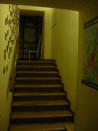 Chocolate Hostel Moscow: stairs in hostel