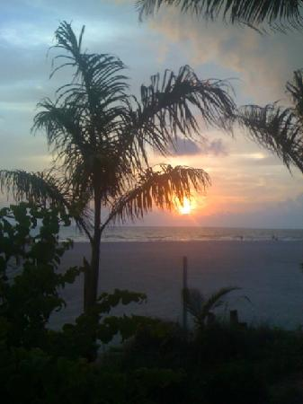 "Grand Plaza Beachfront Resort Hotel & Conference Center: Beach, Palm Trees & Sunset, ""WOW"""