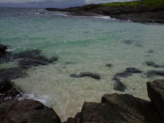 Pedasi, Παναμάς: Isla iguana
