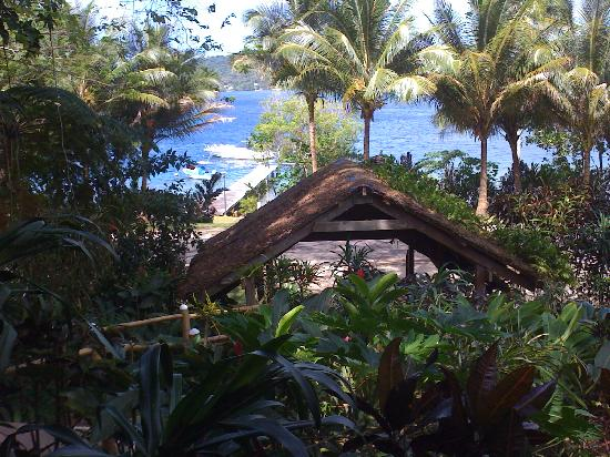 Coral Quays Fish & Dive Resort: View from the deck