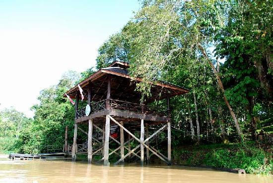 Melapi Lodge Sukau: Bukit Melapi in Kinabatangan