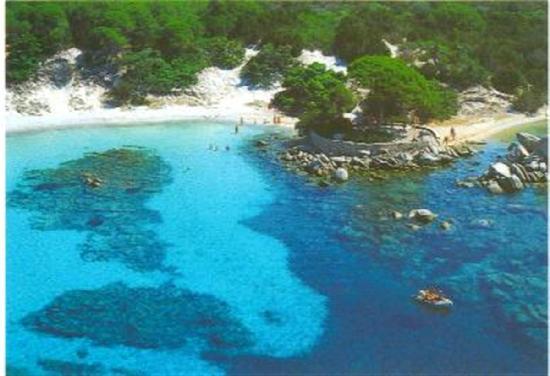 Plage de Palombaggia: Spiaggia di Palombaggia