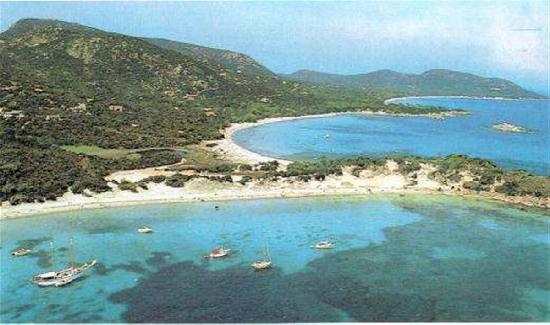 Plage de Palombaggia: Spiagge di  Palombaggia e Acciaiu