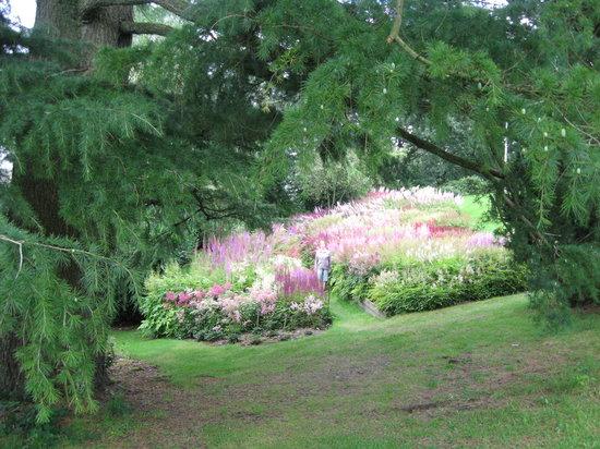 Holehird Gardens: National collection