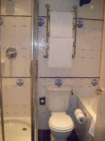Carlton Ambassador Hotel: badkamer