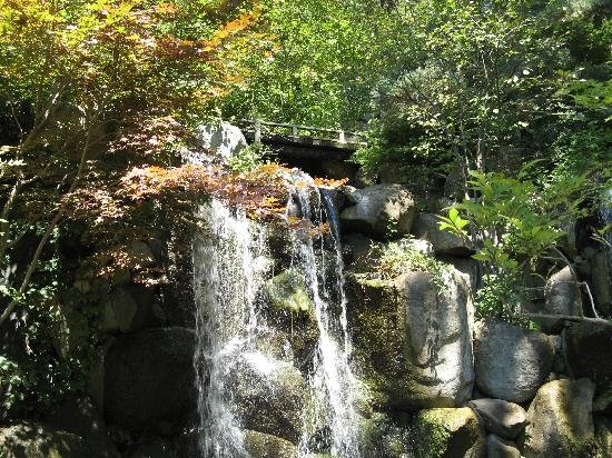 ‪‪Anderson Japanese Gardens‬: the large waterfall‬