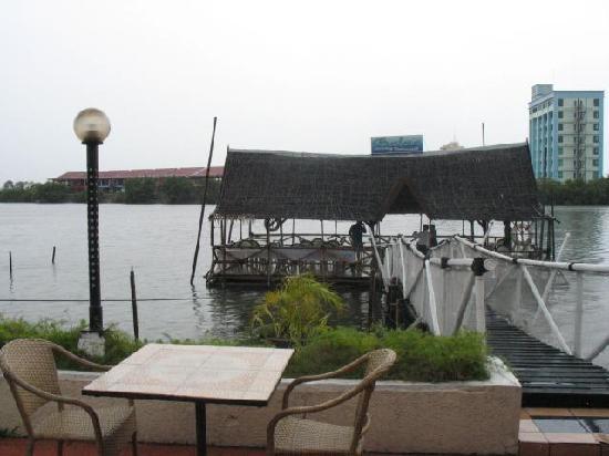Hotel Del Rio : pool area