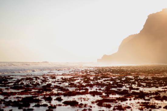อลีลา วิลล่าส์ อูลูวาตู: sun set