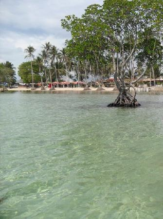 Microtel Inn & Suites by Wyndham Puerto Princesa: high tide