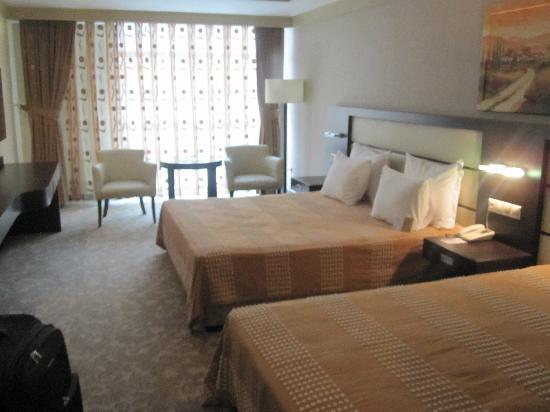 Blue Regency Hotel: themassive room
