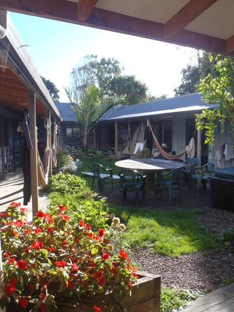 Raglan Backpackers and Waterfront Lodge: sunny courtyard area