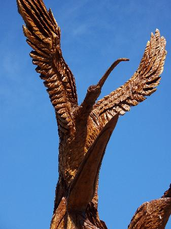 Tree Sculptures: Lots of seabirds