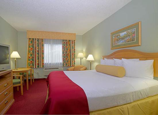 BEST WESTERN PLUS Sebastian Hotel & Suites: King Room