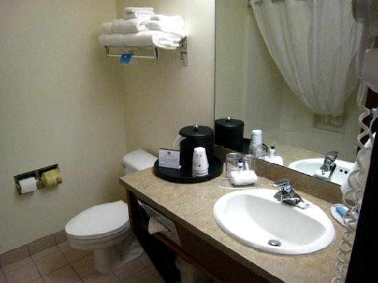 Best Western Plus Park Place Inn & Suites : Bathroom