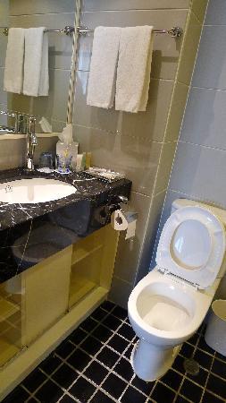 คอสโม โฮเต็ล ฮ่องกง: Toilet 2, no shower facility. However, there is a full length mirror on the right. Can change an
