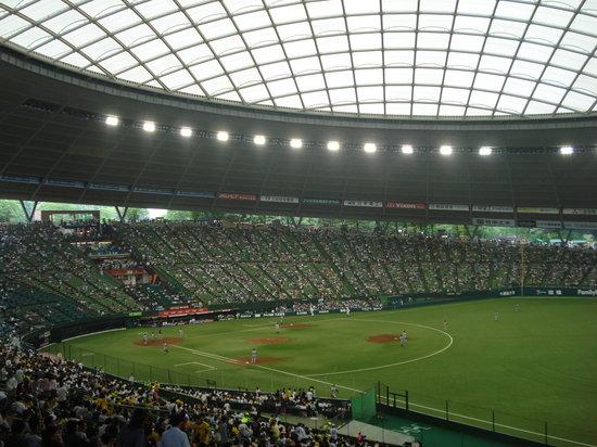 Tokorozawa, Japonya: 球場内部。