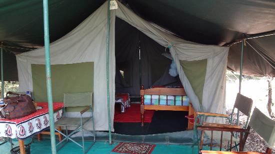 Bushbuck Mara Camp: Comfy bed and all you need.