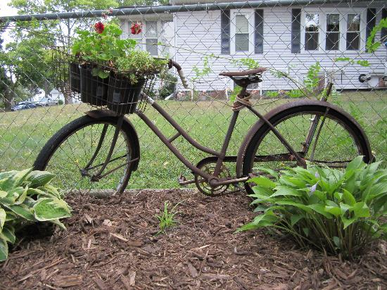 The Black Walnut Guest House: Repurposed bike in front yard