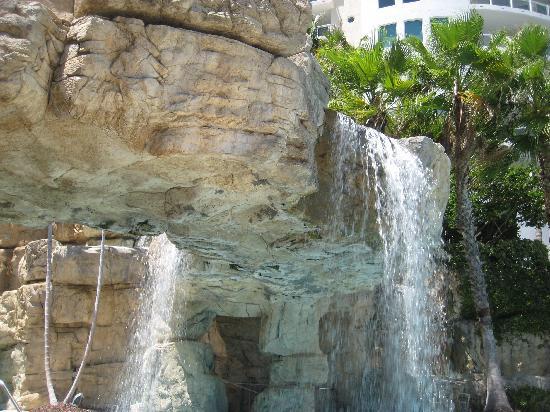 Hyatt Regency Sarasota: Poolside view