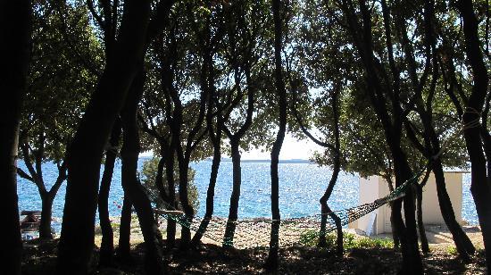 Falkensteiner Family Hotel Diadora: lungo spiaggia