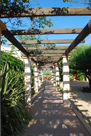 Agroturismo Ca n'Arabi : The Garden area
