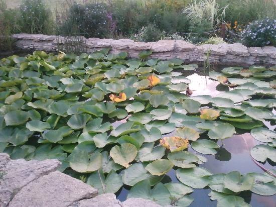 Chisinau, Moldavien: parc floral Dendrariu