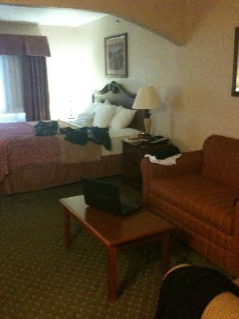 BEST WESTERN PLUS Capital Inn: nice bed!